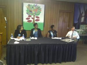 Ferguson Rd Ini Event Panel 4-2011